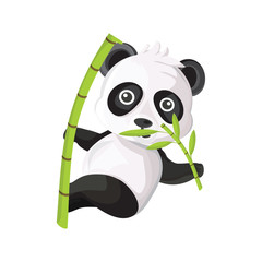 panda vector photos royalty free images graphics vectors