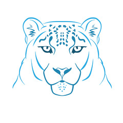 Snow leopard logo mascot. Snow leopard head isolated vector illustration
