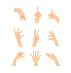 Vector set of Mix beautiful Woman's hand action isolated on white background