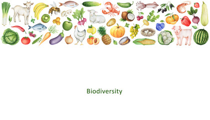 Watercolor banner of the biodiversity.