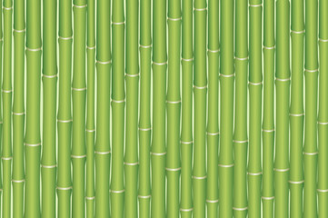 Exotic Horizontal Seamless Pattern, Tropical Bamboo Plants Green Trunks. Vector