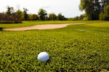 golf ball in the grass