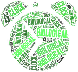 Biological clock or woman health concept.