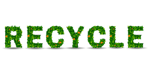 recycle symbol leaf on isolated background