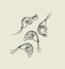 shrimp and prawn image. food hand drawn sketch vector illustrati