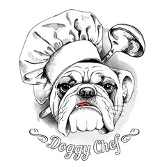 The poster with the image of dog Bulldog in the hat of chef and with the ladle. Vector illustration.