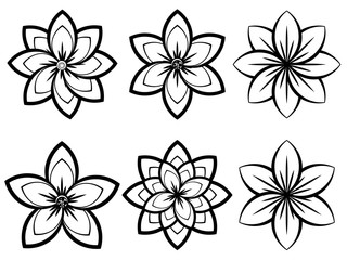 Simple Black and White Flowers