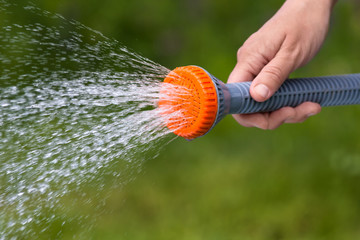hand watering garden with sprinkler, closeup