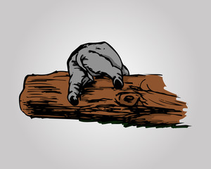 The elephant and the log 0