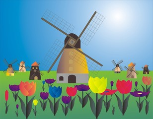 NETHERLANDS COUNTRY  OF WINDMILL AND FLOWER Tulips