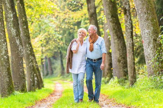 Älteres Paar macht Spaziergang im Wald