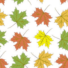 Seamless pattern of autumn maple leaves. Vector