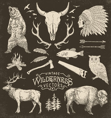 Vintage Wilderness Vector Illustration Set