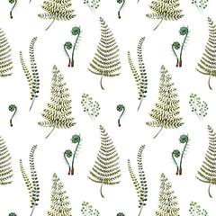 Watercolor fern pattern