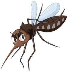 Mosquito in brown color