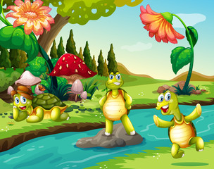 Three turtles at the river