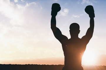 Composite image of boxer posing after victory