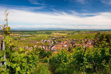Plaine d'Alsace et vignoble avec village typique