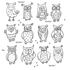 Set of cute cartoon wise owls isolated on white background