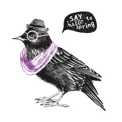 dressed up starling
