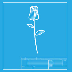 Rose sign illustration. White section of icon on blueprint template.