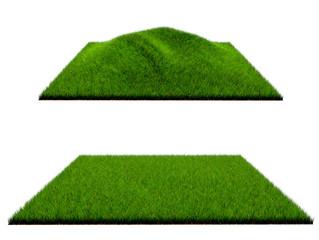 3d grass on white background