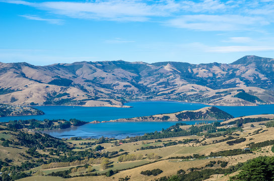 Akaroa harbour view from the hilltop in the heart of Bank Peninsula with an eroded volcanic landscape.