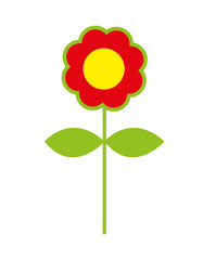 flower colorfull  isolated icon design