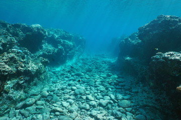 Underwater landscape, seabed carved by swell into the reef, Huahine island, Pacific ocean, French Polynesia