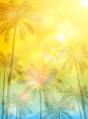 Summer background with palms and sun