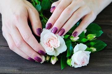 Woman hands with manicured fingernails touching delicate roses