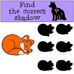 Children games: Find the correct shadow. Little cute baby fox.