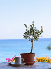 Cup of coffee on a table with olive tree, with the sea view and sky.