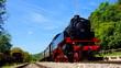 nostalgischer Dampfzug der Sauschwänzle Bahn fährt durch den sonnigen Schwarzwald