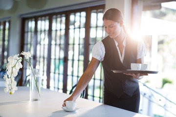 Smiling waitress serving cup of coffee