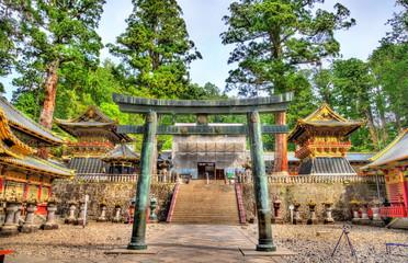 Gate of Toshogu shrine in Nikko Wall mural