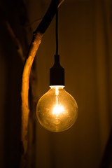 Electric retro light bulb decor