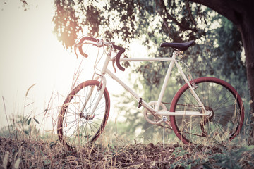 beautiful landscape image with sport vintage Bicycle at sunset