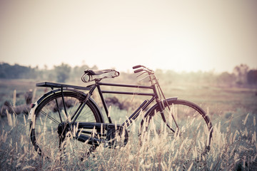 beautiful landscape image with Bicycle at sunset;vintage color t