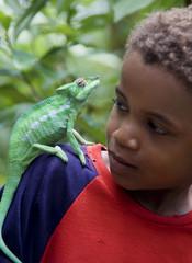 Boy with male panther chameleon, Nosy Komba, Madagascar
