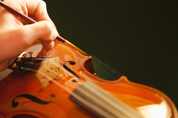 Close-up of Violin maker painting violin