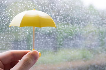 黄色い雨傘