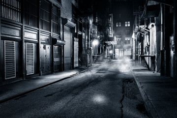 Acrylic Prints New York Moody monochrome view of Cortlandt Alley by night, in Chinatown, New York City