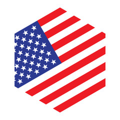 usa flag hexagon icon logo vector illustration. independence day. 4th of July