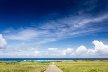 海への一本道