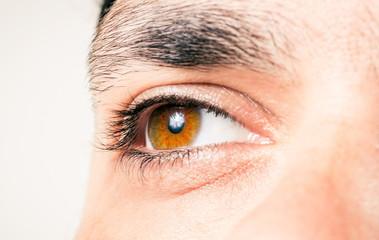 Male eye macro shot