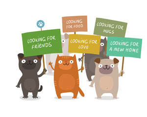 Dogs and cats manifesting and holding placards: Looking for a new home, friends, food, love, hugs. Animal rights protection concept. Vector colorful illustration isolated on white