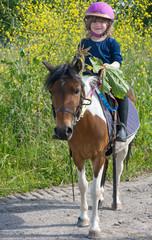 décorer son poney avec des fleurs