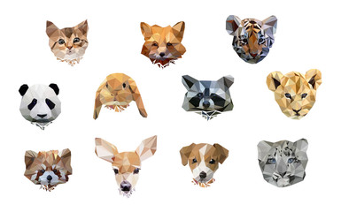 vector illustration animal polygon low poly. cute set animal