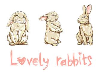 illustration of a cute bunny, rabbit